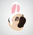 lady dog rabbit vector image