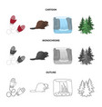 canadian fir beaver and other symbols of canada vector image vector image
