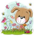 cute cartoon puppy on a meadow vector image vector image