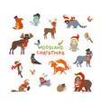 woodland christmas vector image