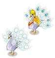 white peacock in precious royal garment vector image