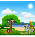 cartoon wild animals in the jungle vector image vector image