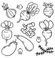 collection of vegetable doodles vector image vector image