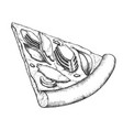 delicious freshness slice pizza hand drawn vector image vector image