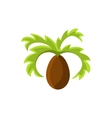 frican Palm Tree vector image
