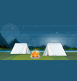 tent camping area with campfire night campsite vector image