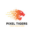 thought tiger roar logo designs vector image
