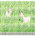 Two goats in the farm vector | Price: 1 Credit (USD $1)