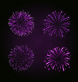 beautiful purple fireworks set bright fireworks vector image vector image