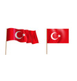 colorful naturalistic waving flag turkey vector image