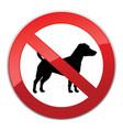 no dog walk sign dog walking fobidden symbol vector image