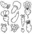 set of vegetables doodles hand draw vector image vector image