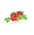 Strawberries with leaves fruit healthy food vector image vector image