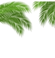 Tropical leaves vector image vector image