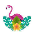 exotic flamingo hibiscus flower leaves tropical vector image vector image