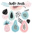 set creative modern fruits hand drawn trendy vector image vector image