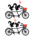 squirrels in love on bicycle vector image vector image