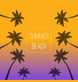 summer palm beach palms background palm trees vector image