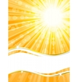 sunshine banner vector image vector image