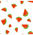 watermelon fresh slices cartoon seamless vector image
