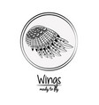 wings draw emblem cartoon vector image vector image