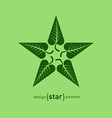 Abstract design element star with green summer vector image vector image