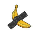 banana taped to wall sketch vector image