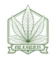 cannabis green leaf logo vector image