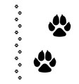 dogs paw dog footprint flat icon isolated on vector image