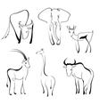 wild animals design set vector image