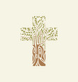 flat design christian cross in form tree vector image