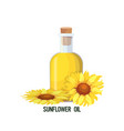 fresh sunflower oil glass bottle isolated on white vector image