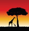 giraffe art silhouette vector image vector image