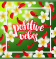 hand drawn calligraphy positive vibes vector image vector image
