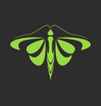 sign of a green butterfly on a black background vector image vector image