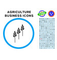 wheat plants rounded icon with set