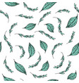 aquamarine leaves pattern vector image vector image