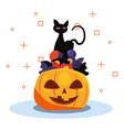 black cat halloween and pumpkin vector image vector image