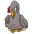 hen on eggs animal character cartoon vector image vector image