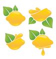 lemon stickers vector image vector image