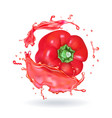 red sweet bulgarian bell pepper realisitc icon vector image