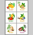 superfood icons set vector image vector image