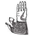 a very common glove vintage engraving vector image vector image