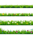 big set flowers frame vector image vector image