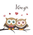 couple of owls in love on a white background and vector image