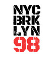 district of new york brooklyn vector image vector image