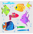 fishes collection decorative style set vector image vector image