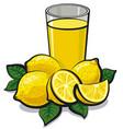 fresh lemon juice vector image vector image