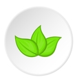 Green leaves icon cartoon style vector image vector image