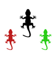 lizards vector image